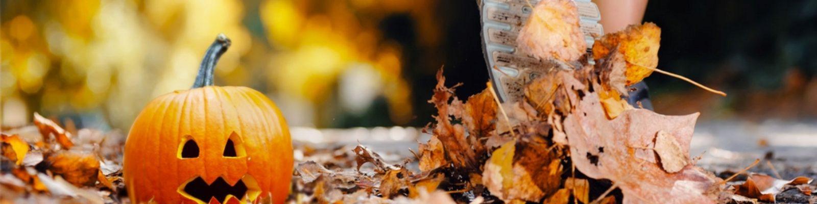 Fall running clinic
